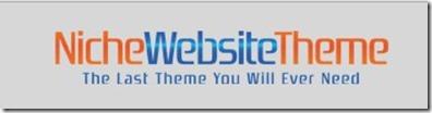 website theme niche blogger wordpress