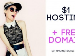 Web hosting for your website for a dollar $1